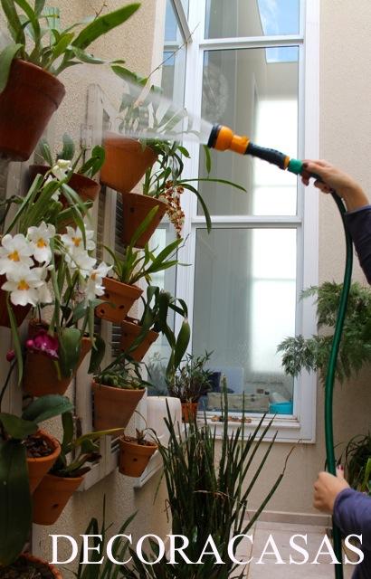 plantas no inverno1