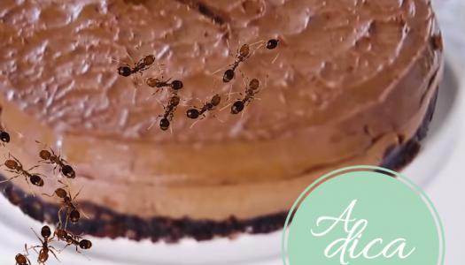 xô, formigas! | #aDicadoDia
