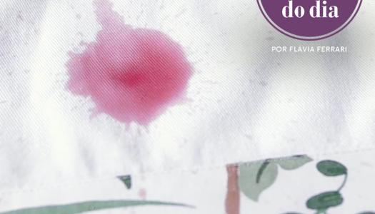 10 produtos caseiros para tirar manchas | #aDicadoDia
